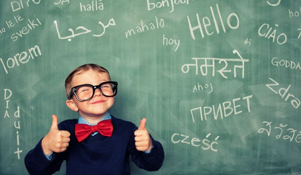 Too Old to Learn New Language? Maybe No